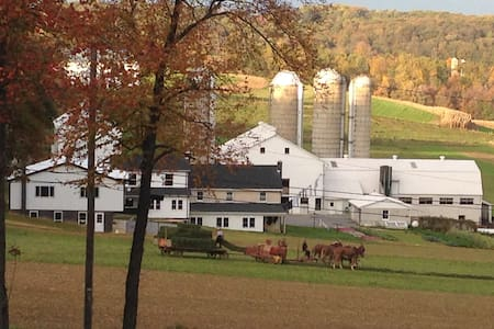 Picturesque Luxury in Amish Country - Quarryville - House