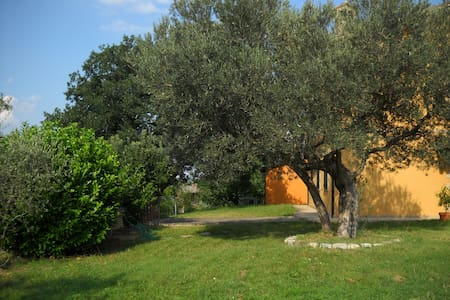 b&b nell'immediata periferia - Bed & Breakfast