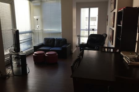Downtown 1 bedrm condo daily rent