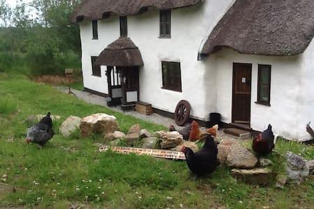 Cuckoo Farm The Owl Room - Modbury - House