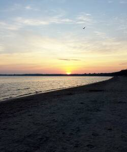 FREE SANDBANKS BEACH PASS -1 DOUBLE - Maison