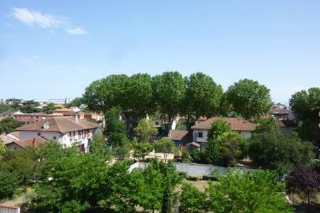 T2 calme, ensoleillé, parking, 50m airbus st Eloi - Toulouse - Apartmen