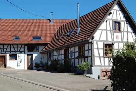 maison d hôtes la bouill'hôte - Langensoultzbach - Rumah Tamu