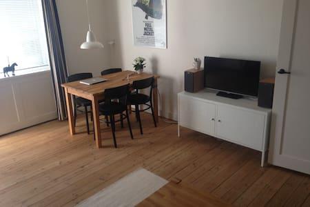 Nice, cozy apartment i Copenhagen