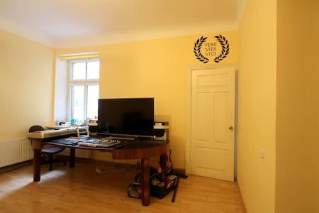 Big guestroom - Riga - Lägenhet