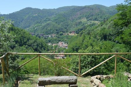 Tuscan olive farm apartment - Apartment