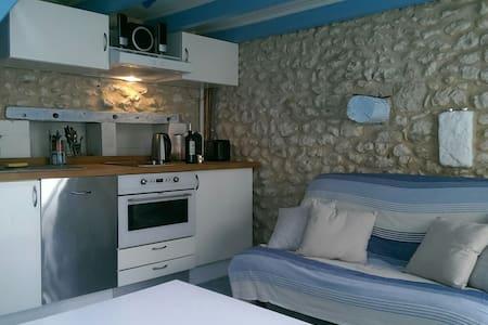 La petite maison bleue... - Mortagne-sur-Gironde - Hus