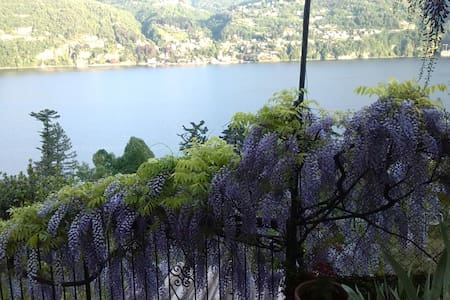 Giardino di iris e ulivi sul lago - Bed & Breakfast