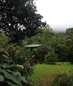 Valley Retreat: Dreams Do Come True - Hanalei