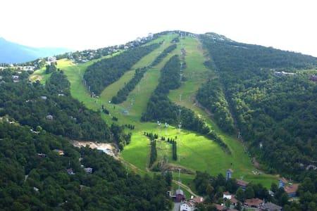 Beech Mountain Chalet at 5,000ft! - Beech Mountain