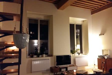 Appartement typique au coeur de Croix rousse - Lyon