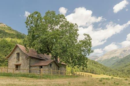 Borda rehabilitada en pleno Pirineo - Talo