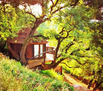 Treehouse holidays in a organic far