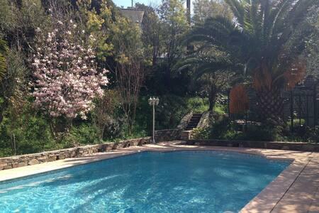 T3 avec terrasse et piscine - Oletta - Daire