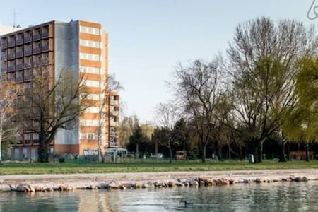 Apartment with shower and kitchenette on 4th floor of tower right at the beach! Max capacity of 3: two beds + an extendable sofa. Towels and bed linen, basic utensils provided. Shared wellness for a small fee: sauna, plunge pool, fitness machines.