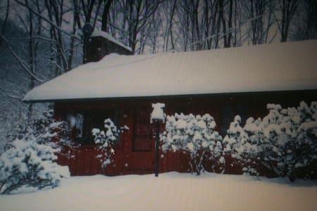 Winter Wonderland! - Ligonier
