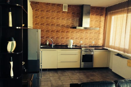 Very central appartment in Trakai! - Apartamento