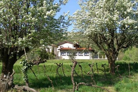 Brda Winery & Villa Accommodation - Bed & Breakfast