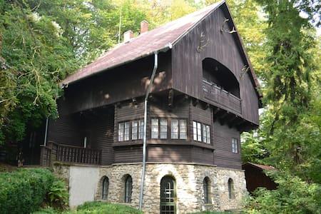 An old villa - in the nature - Városlőd