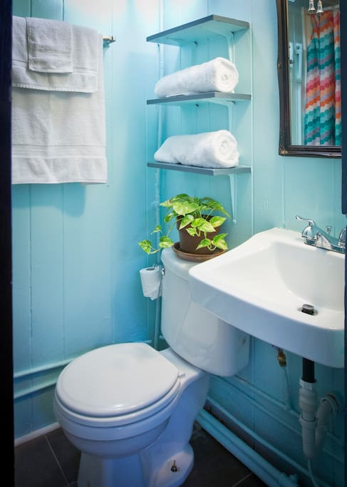 Small yet fun & colorful bathroom to get so fresh & so clean in.