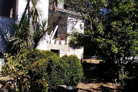 Casa da Seara Oliveira de Frades - Dom