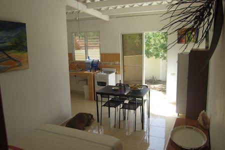 les arecas - La Isabela - House