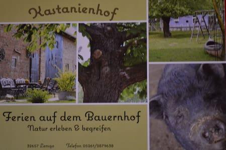 ökologisches Bauernhaus + Tierpark - Ev