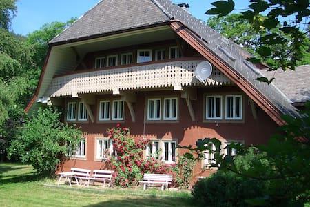 Haus Bacmeister Wohnung I - Sankt Blasien