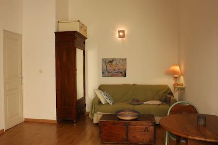 Studio très agréable Cagnes Sur/Mer, près de Nice - Cagnes-sur-Mer - Appartamento