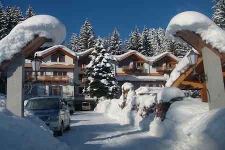 """Apartment """"Wilder Kaiser"""" at Gartenhotel Rosenhof - Oberndorf in Tirol"""