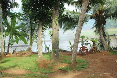 The Mango tree - Hikkaduwa - House