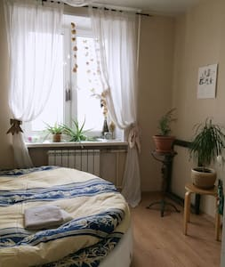 Cozy flat in the center of Moscow
