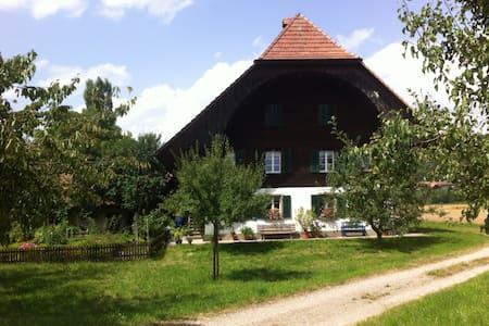 Wohnung im Grünen ( 1-3 Pers.) Gross, ruhig - Rüderswil - Appartement