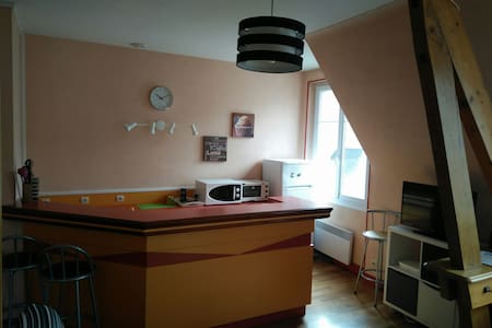 Bel appartement en plein coeur de Blois - Leilighet