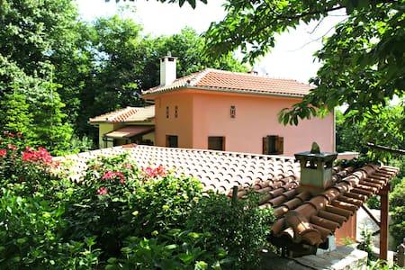 BEAUTIFUL TRADITIONAL HOUSE - Casa