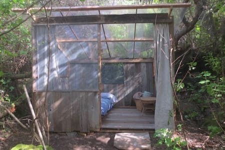 Covered Futon - Big Sur - Tent