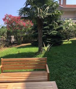 Villa Tortuga - 一軒家