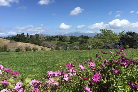 Lavender Hill Ranch Santa Ynez - Solvang - House