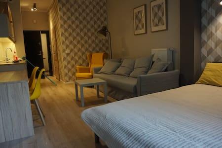 przytulny apartament w atrakcyjnej dzielnicy. - Poznań