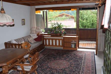 Gemütliches Apartment in Liftnähe - Hinterthal - Apartment