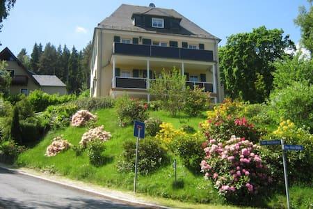 Villa Goldbrunnen (Ferienwohnung 3) - Bad Elster - Pis
