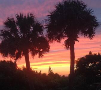 Daytona Beach Paradise Palms - Daytona Beach