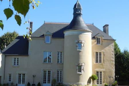 Château 12ème siècle - Mignerette - Zamek
