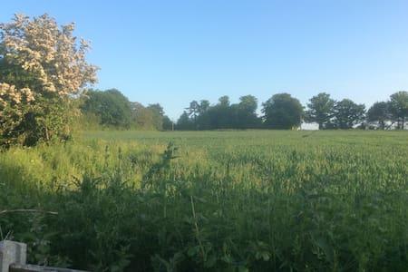 Contemporary family farmhouse - Fressingfield