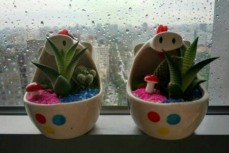 高校环绕的风景房,一次只接待一位或两位同行房客 - Beijing - Apartment