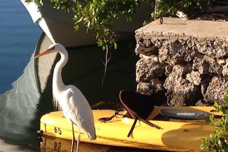 Manatee Cove -Bayside, Key Largo - Key Largo - 公寓