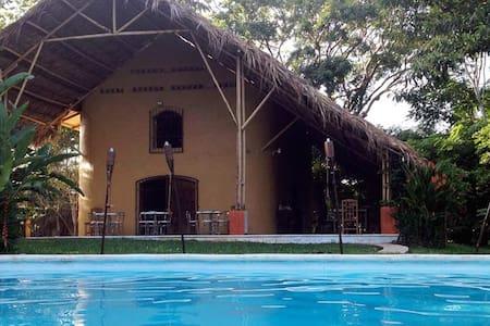 Colombre en la selva de Palenque 2p - Almhütte