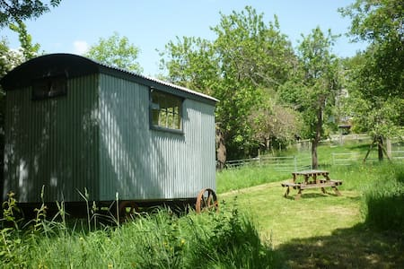"""Daphne"" the Shepherd's Hut! - Altres"