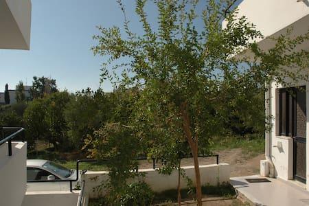 Olympos Apartments (No2) - Gennadi - Apartament
