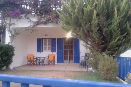 Μαντώ House - Kato Agios Petros - House
